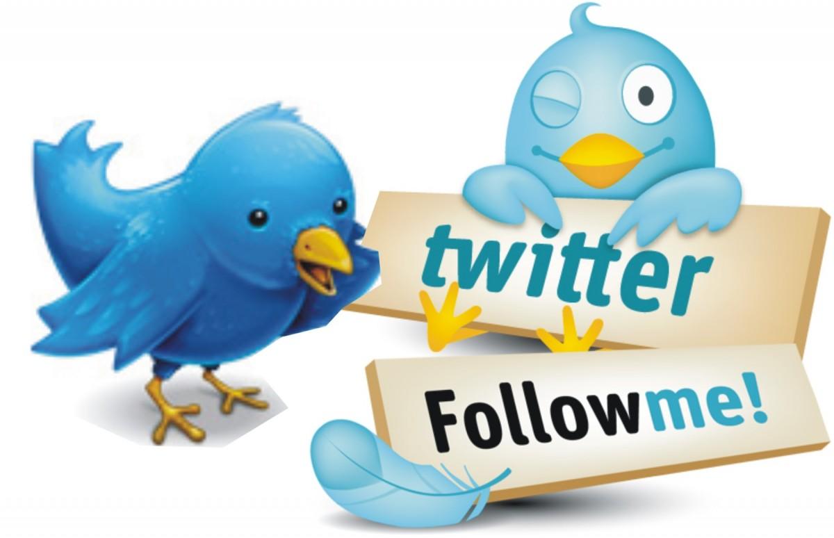 Twitter e opinione pubblica- quale funzione e quali effetti – 2° parte